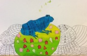 Frogs art competition